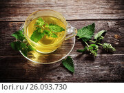 Купить «green melissa herbal tea in glass cup on wooden background», фото № 26093730, снято 5 июля 2016 г. (c) Майя Крученкова / Фотобанк Лори