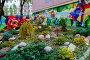 Москва, ландшафтный дизайн во дворе жилого дома, фото № 26119354, снято 1 мая 2017 г. (c) glokaya_kuzdra / Фотобанк Лори