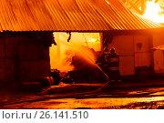 Купить «Firefighters extinguish a fire», фото № 26141510, снято 25 февраля 2020 г. (c) Антон Гвоздиков / Фотобанк Лори