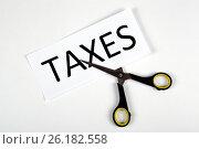 Купить «Metaphor for the payment of taxes», фото № 26182558, снято 4 мая 2017 г. (c) Александр Калугин / Фотобанк Лори