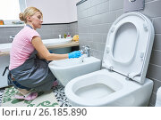Купить «Cleaning service. woman clean toilet sink», фото № 26185890, снято 2 февраля 2017 г. (c) Дмитрий Калиновский / Фотобанк Лори