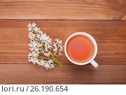 Cup of tea and a bouquet of lilacs on a wooden background. Стоковое фото, фотограф Владимир Семенчук / Фотобанк Лори