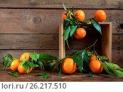 Купить «Tangerines with leaves on wooden box», фото № 26217510, снято 13 ноября 2019 г. (c) easy Fotostock / Фотобанк Лори