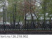 Купить «May 8, 2017, snowfall in the streets of Moscow», фото № 26218902, снято 8 мая 2017 г. (c) Ткачёва Ольга / Фотобанк Лори