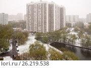 Купить «Снегопад в мае в Москве», фото № 26219538, снято 8 мая 2017 г. (c) Бондаренко Олеся / Фотобанк Лори