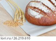 Свежеиспечённый хлеб. Стоковое фото, фотограф Александр Палехов / Фотобанк Лори