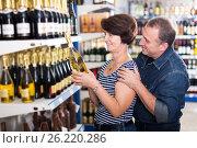 Купить «Husband and wife selecting a vine», фото № 26220286, снято 29 января 2020 г. (c) Яков Филимонов / Фотобанк Лори