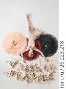 Купить «Blonde ballerina lies in studio», фото № 26223218, снято 17 апреля 2017 г. (c) Andriy Bezuglov / Фотобанк Лори