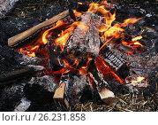 Горящий костер. Стоковое фото, фотограф Ирина Горбачева / Фотобанк Лори