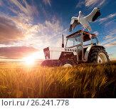 Купить «Wheat fields, exotic birds and tractor.Rural travel concept», фото № 26241778, снято 20 января 2020 г. (c) easy Fotostock / Фотобанк Лори