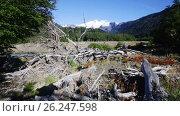 Купить «View from valley of river Cauquenes to mountain Tronador and glacier on summer day. Patagonia, Argentina», видеоролик № 26247598, снято 9 марта 2017 г. (c) Яков Филимонов / Фотобанк Лори