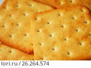 Печенье. Стоковое фото, фотограф Sergey  Ivanov / Фотобанк Лори