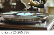 Купить «Vinyl record spinning on vintage old gramophone - close up», видеоролик № 26265786, снято 26 марта 2019 г. (c) Константин Шишкин / Фотобанк Лори