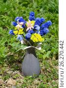 Купить «Букет весенних первоцветов в керамической вазочке на траве», эксклюзивное фото № 26270442, снято 14 мая 2017 г. (c) Елена Коромыслова / Фотобанк Лори