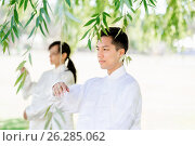Купить «People practicing thai chi in park», фото № 26285062, снято 19 декабря 2014 г. (c) Sergey Nivens / Фотобанк Лори