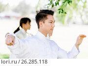 Купить «Handsome man practicing thai chi», фото № 26285118, снято 19 декабря 2014 г. (c) Sergey Nivens / Фотобанк Лори