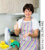 Купить «mature woman cleaning», фото № 26294442, снято 26 июня 2019 г. (c) Яков Филимонов / Фотобанк Лори