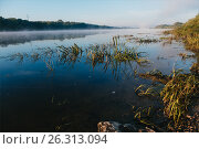 Купить «Foggy morning at Oka river. Russia.», фото № 26313094, снято 6 августа 2016 г. (c) Liseykina / Фотобанк Лори