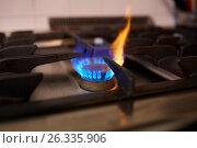 Купить «burning gas stove flame», фото № 26335906, снято 17 февраля 2017 г. (c) Syda Productions / Фотобанк Лори