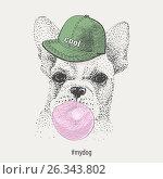 French bulldog in rapper cap inflates bubble gum. vector. freehand drawing. Стоковая иллюстрация, иллюстратор Юлия Дакалова / Фотобанк Лори