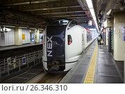 Купить «Скоростной поезд-трансфер NEX из аэропорта Нарита до города Токио. Остановка на станции Shinjuku, Япония», фото № 26346310, снято 16 апреля 2013 г. (c) Кекяляйнен Андрей / Фотобанк Лори