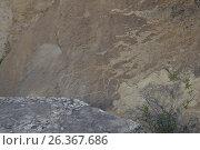 Купить «Petroglyphs made by primeval man. Gobustan national park. Azerbaijan», фото № 26367686, снято 26 апреля 2017 г. (c) Аркадий Захаров / Фотобанк Лори