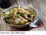 Купить «Chicken salad», фото № 26389262, снято 4 мая 2017 г. (c) Stockphoto / Фотобанк Лори