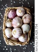 Close-up of basket with ripe garlic. Стоковое фото, фотограф Дарья Зуйкова / Фотобанк Лори