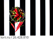 Red chili peppers on striped background. Стоковое фото, фотограф Дарья Зуйкова / Фотобанк Лори
