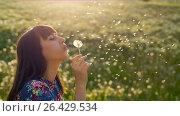 Купить «Woman Blowing on a Dandelion», видеоролик № 26429534, снято 23 мая 2017 г. (c) Илья Шаматура / Фотобанк Лори