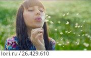 Купить «Woman Blowing on a Dandelion at sunset», видеоролик № 26429610, снято 24 мая 2017 г. (c) Илья Шаматура / Фотобанк Лори
