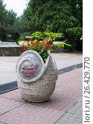 Каменный горшок с цветущим растением. Стоковое фото, фотограф Виктория Ратникова / Фотобанк Лори