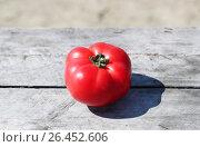 Купить «Спелый помидор», фото № 26452606, снято 12 октября 2016 г. (c) Вероника / Фотобанк Лори