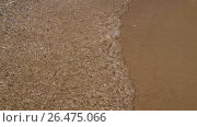 Купить «Waves lapping on the sandy shore», видеоролик № 26475066, снято 24 апреля 2019 г. (c) Леонид Еремейчук / Фотобанк Лори