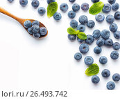 Blueberries isolated on white background. Стоковое фото, фотограф Ольга Сергеева / Фотобанк Лори