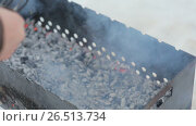 Купить «Shish kebab from poultry meat on skewers is cooked on a brazier in the winter», видеоролик № 26513734, снято 1 мая 2017 г. (c) Mikhail Davidovich / Фотобанк Лори