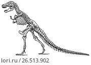 Купить «Скелет тираннозавра. Виды динозавров», иллюстрация № 26513902 (c) Макаров Алексей / Фотобанк Лори