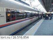 Купить «Посадка пассажиров в поезд Сапсан, проводник проверяет билеты», фото № 26516854, снято 5 мая 2017 г. (c) Юлия Бабкина / Фотобанк Лори
