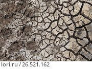 dry cracked ground surface. Стоковое фото, фотограф Syda Productions / Фотобанк Лори