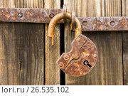 Купить «Замок, покрытый ржавчиной на двери сарая», фото № 26535102, снято 20 ноября 2019 г. (c) glokaya_kuzdra / Фотобанк Лори