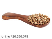 Купить «Целый кориандр в деревянной ложке», фото № 26536078, снято 20 июня 2019 г. (c) Скляров Роман / Фотобанк Лори
