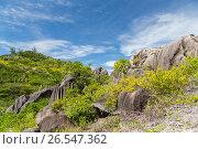 Купить «stones and vegetation on seychelles island», фото № 26547362, снято 12 февраля 2017 г. (c) Syda Productions / Фотобанк Лори
