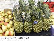 Купить «Прилавки со свежими овощами и фруктами», эксклюзивное фото № 26549270, снято 17 июня 2017 г. (c) Юрий Морозов / Фотобанк Лори
