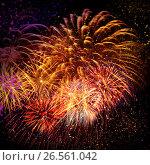 Купить «Beautiful fireworks in a night sky», фото № 26561042, снято 13 августа 2016 г. (c) ElenArt / Фотобанк Лори