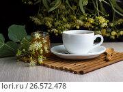 Купить «Чай в белой чашке с веткой липы, медом и ложкой на бамбуковой подставке», фото № 26572478, снято 20 июня 2019 г. (c) Скляров Роман / Фотобанк Лори