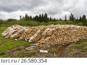 Pile of chopped firewood logs. Стоковое фото, фотограф Михаил Пряхин / Фотобанк Лори