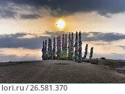 Столбики коновязи (Сэргэ) с привязанными лентами залаа на месте поклонения богу Бурхану на острове Ольхон, озере Байкал, фото № 26581370, снято 23 марта 2017 г. (c) Геннадий Соловьев / Фотобанк Лори