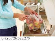 Купить «woman weighing apples on scale at grocery store», фото № 26585270, снято 2 ноября 2016 г. (c) Syda Productions / Фотобанк Лори