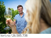Купить «Smiling man looking at woman holding wineglasses», фото № 26585738, снято 31 января 2017 г. (c) Wavebreak Media / Фотобанк Лори