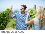 Купить «Young couple raising hands while holding wineglasses», фото № 26587902, снято 31 января 2017 г. (c) Wavebreak Media / Фотобанк Лори